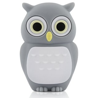 4GB Baby Owl Dark Grey USB 2.0 High Speed Silicon Flash Memory Drive Disk Stick Pen Support Windows and MacOS Great Gift by EASYWORLD