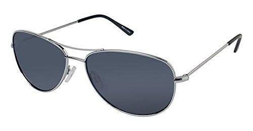 ann-taylor-at0913-sunglasses-frame-silver-lens-color-black