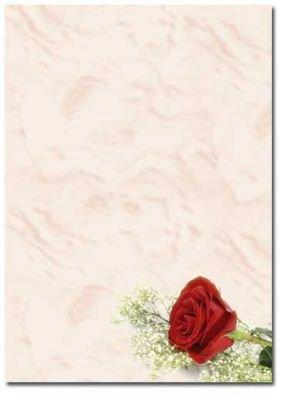 Motivpapier briefpapier rote rose 20 blatt din a4 90g - Briefpapier vorlagen kostenlos ...