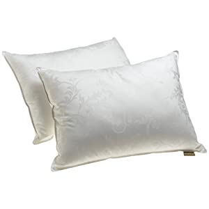 Dream Supreme Plus 100% Gel Filled Pillows, Set of 2 - Save: 14%