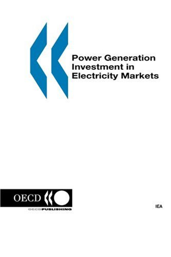 Power Generation Investment in Electricity Markets (Energy Market Reform)
