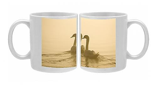Photo Mug Of Mute Swans - Pair Swimming In Pre-Dawn Mist front-575209