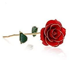 Econoled Long Stem Dipped 24k Gold Trim Red Rose in Gold Gift Box