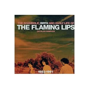 Flaming Lips In concerto