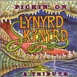 Pickin on Lynyrd Skynyrd