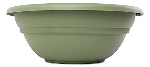 Bloem MB2124-42 Milano Planter Bowl, 24-Inch, Living Green (24 Urn Planter compare prices)