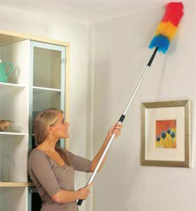 Telescopic Static Feather Duster