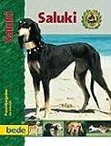 PraxisRatgeber Saluki.