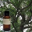 Camphor 100% Pure Essential Oil - 1oz