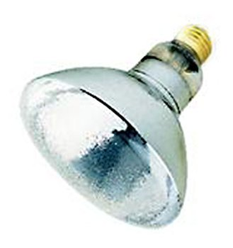 Havells Sli 00514 75br38 Sp 75 Watt Br38 Outdoor Incandescent Spot Light Bulb 130 Volt Long