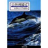 イルカを追って―野生イルカとの交流記 (集英社文庫)