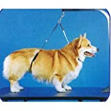 No-Sit Haunch Holder Dog Grooming Restraint Sm Med Dogs