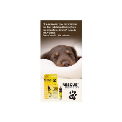 Bach Pet Natural Stress Relief Size: 10Ml