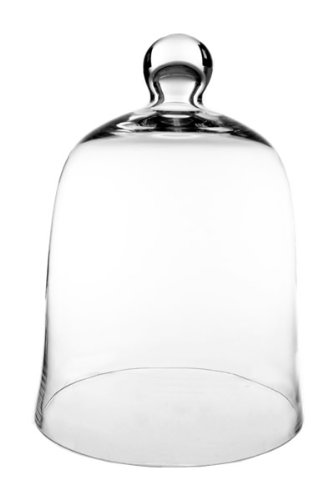 Glass Cloche Bell Jar, Plant Terrarium.