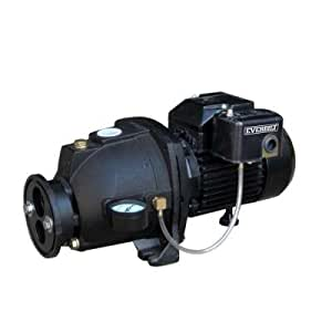 Everbilt Convertible Jet Pump 3/4 HP - - Amazon.com