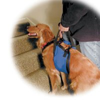 Our Pets Lift-N-Aid Large Mobility Harness by Our Pets