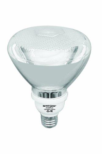 Earthtronics Pa23501B 23-Watt 5000K Par38 Cfl Floodlight, Natural White