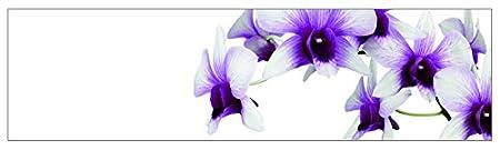 mySPOTTI  251061 profix Orchidee lila, Kuchenruckwand, 220 x 60 cm