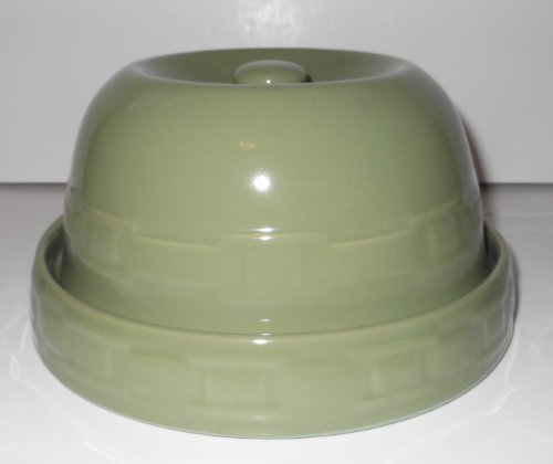 Sage Green Microwave