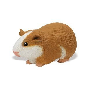 Safari Ltd  Incredible Creatures Guinea Pig