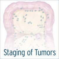 Staging of Tumors