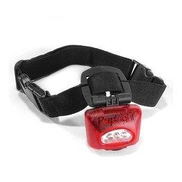 PupLight Dog Safety Light, Red