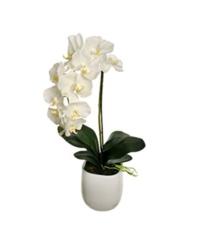 Orquídea Artificial En Maceta De Cerámica