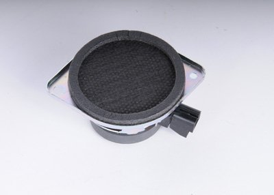 ACDelco 15766179 GM Original Equipment Rear Quarter Trim Panel Radio Speaker