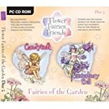 CD Rom Flower Fairies Candytuft
