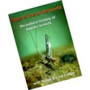Amazon.com: Bugs of the Underworld DVD: Sports & Outdoors