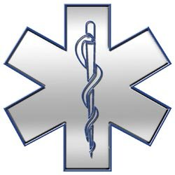 Silver and Blue Star of Life - 28