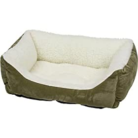 PETCO Lounger Cat Bed in Sage