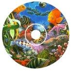 Reefs to Rainforests by Charles Lynn Bragg