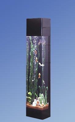 Vertical Fish Tank : 30 gallon vertical fish tank - 301 Moved Permanently 2017 - Fish Tank ...