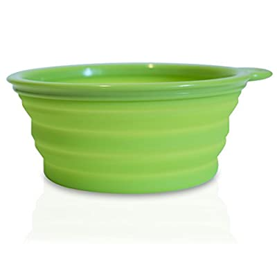 Collapsible Travel Dog Bowls (Set of 2 with Case) for Food & Water
