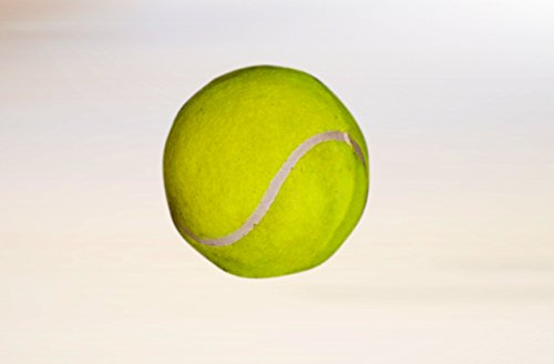 Vani Sports Tennis Ball Set Of 1