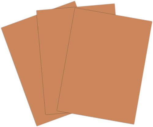 Roselle Vibrant Construction Paper, 50ct, Lt. Brown (CON2391250)