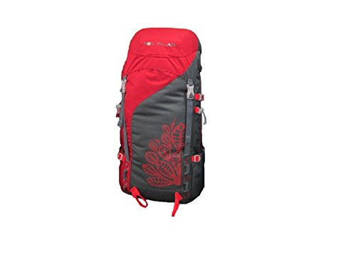 Red REDPILLAR BACKPACK ALANG 45 RED
