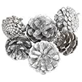 FunRobbers Christmas Decoration Hanging Pine Cone- Silver Small- Pack Of 12