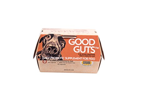 The Best Barand For Probiotic For Dog