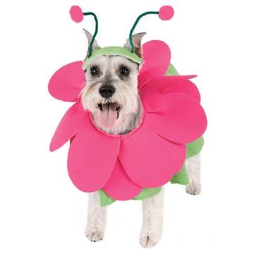 Bloomin Snout Pet Costume