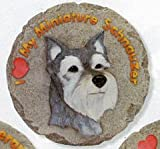 Spoontiques Miniature Schnauzer Stepping Stone