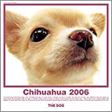HCL-716 THE DOGチワワカレンダー2006
