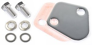 Jegs Performance Products 50582 Chrome Fuel Pump Block-Off Plate