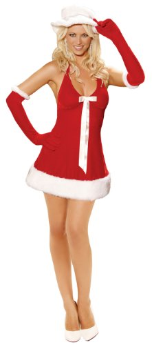 Sexy Santa's Honey Christmas Costume - Womens Small 2-6