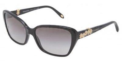 3090cc95e6d5 TIFFANY Sunglasses TF 4069B 80013C Black 58MM