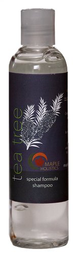 Tea Tree Shampoo for Moderate Dandruff  Argan,