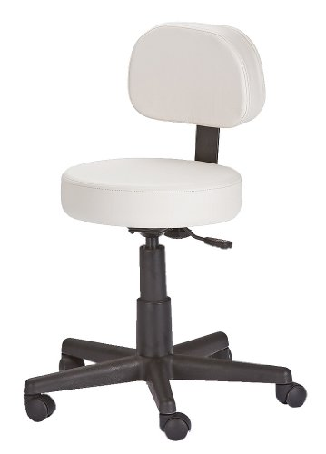 Earthlite Pneumatic Rolling Stool With Back Support Ns