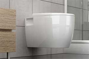 Design bathroom toilet wall mounted hung wc toilet and trendy back to wall bath toilet lavatory white ceramic toilet bowl with slow down function       Customer review and more information
