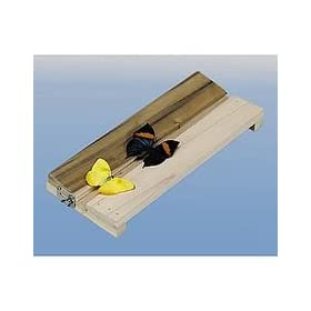 Insect Mounting Board, Adjustable